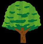tree_keyaki(1)